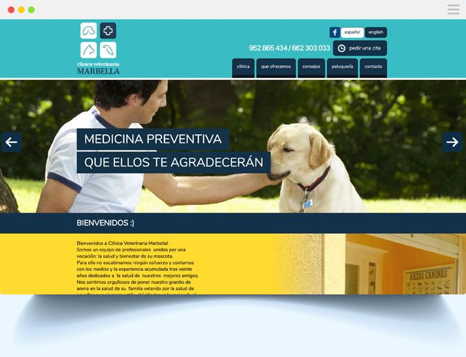 Diseño página web a medida por Iconos Consultores